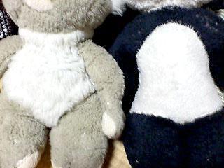 Bun太郎とコアラ太郎のボデー